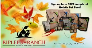 fall-free-offer